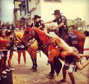 yo quiero ser un caballo policial